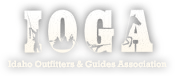 logo-ioga